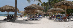 beach with palm umbrellas in Punta Canta